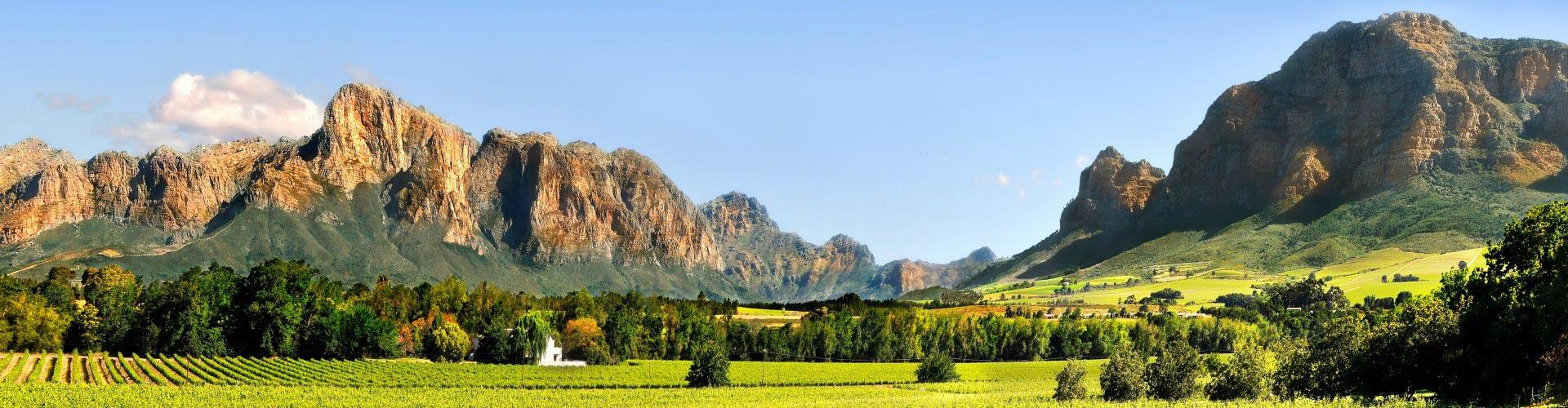 vredelust-minnegoedwines-minnegoed-wijnen-zuidafrika