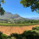 Minnegoed Wines View Of Simonsberg
